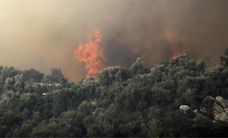 Μάχη με τις φλόγες στον Κιθαιρώνα - Οι ισχυροί άνεμοι δυσκολεύουν την κατάσβεση
