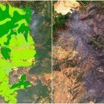 Το Copernicus δίνει στη δημοσιότητα το μέγεθος της καταστροφής από την πυρκαγιά στην Εύβοια