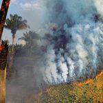 Σε Διεθνή πολιτική αντιπαράθεση εξελίσσεται ο φλεγόμενος Αμαζόνιος