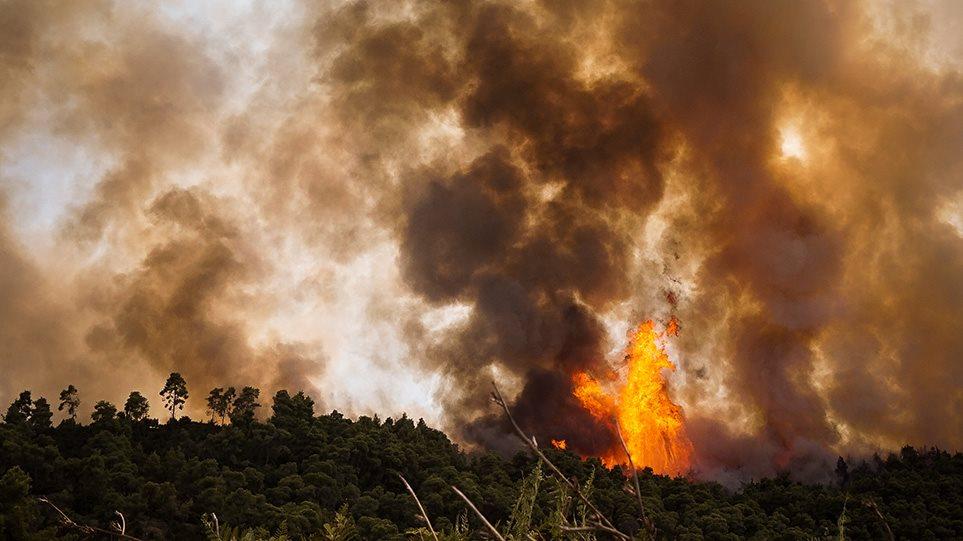 Συνελήφθη κατά συρροή εμπρηστής - Είχε βάλει τρεις πυρκαγιές στην Ηλεία