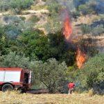 Πολύ υψηλός κίνδυνος πυρκαγιάς σήμερα στη Δευτέρα