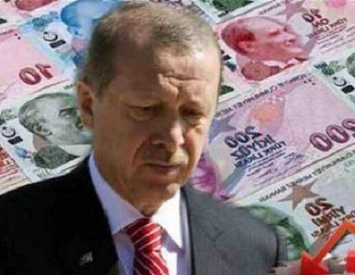 Erdoganomics λίρα