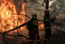 Γορτυνία πυρκαγιές